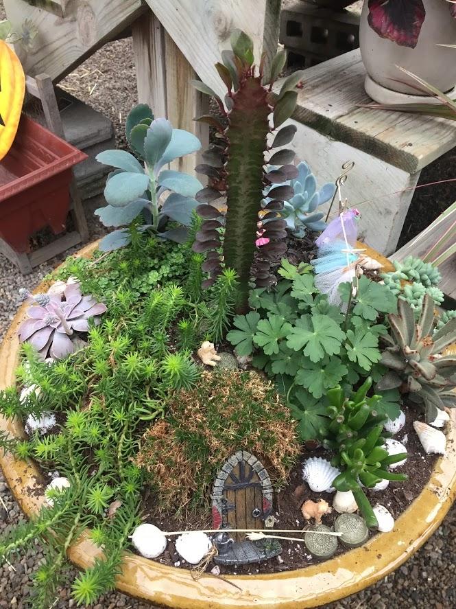 Fairy Garden unContest!